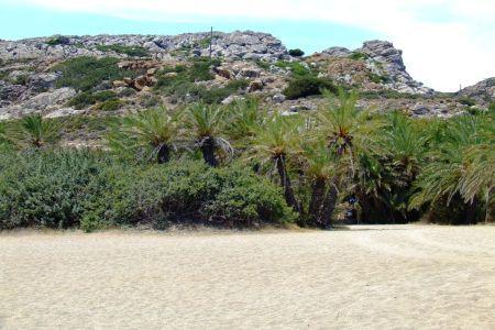 Plaża Vai Kreta
