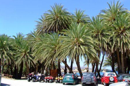 Parking Plaża Vai Kreta